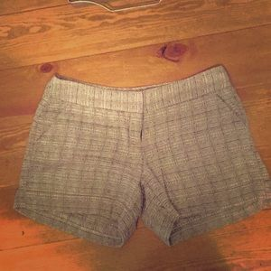 The Limited brand dress knit shorts